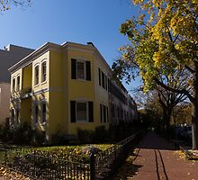 Washington, DC Facades – Sharp Autumn Shadows in Foggy Bottom Neighborhood by Georgia Mizuleva