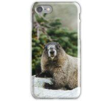It's a Hoary marmot! iPhone Case/Skin