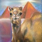 Camel by Michelle Potter