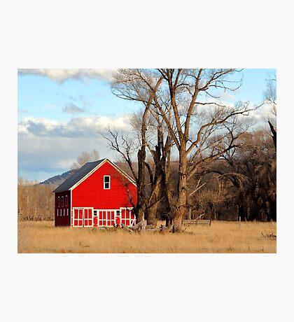 Big Red Photographic Print