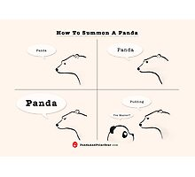 How To Summon A Panda Photographic Print