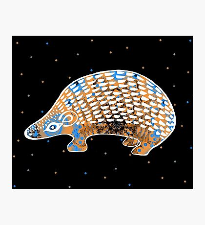 GREEK HEDGEHOG Photographic Print