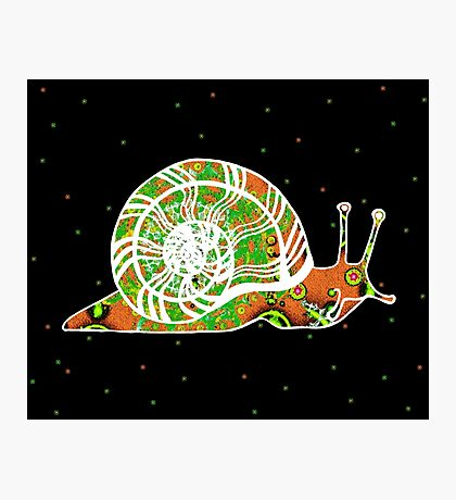 GREEK SNAIL Photographic Print