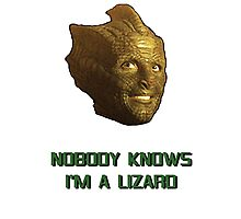Doctor Who's Madame Vastra - Nobody Knows I'm a Lizard Photographic Print