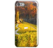 The heart of Styria in Autumn iPhone Case/Skin