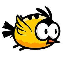Cute Yellow Bird Flying Photographic Print