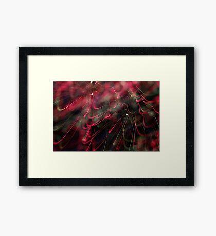 fireworks 5/11/16 Framed Print
