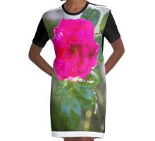 rote rose nach regen Graphic T-Shirt Dress