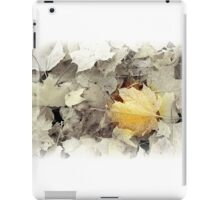 Touch of Frost iPad Case/Skin