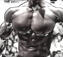 Arnold Schwarzenegger Arnie Conquer Quote Sticker