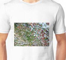 Red Berry Snow - TX Unisex T-Shirt
