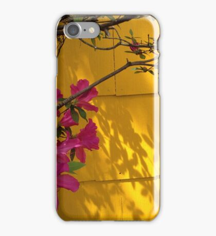 Azaleas in bloom iPhone Case/Skin
