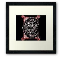 Old print ornament letter E Framed Print