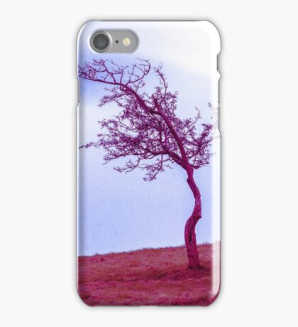 Scraggly Phoenix Park Tree iPhone Case/Skin