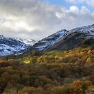 Little Langdale Autumn by Jamie  Green