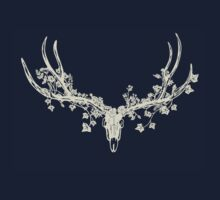 Deer Skull Paper-Cut by thethinks
