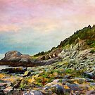 Gull Rock, Monhegan Island, Maine by Dave  Higgins