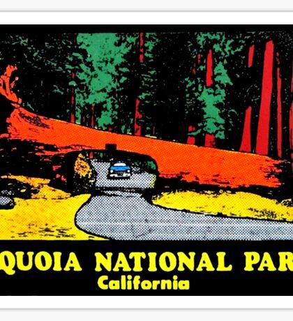 Sequoia National Park Drive Thru Tree Vintage Travel Decal Sticker