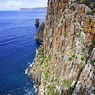 Cape Huay Cliffs by Harry Oldmeadow