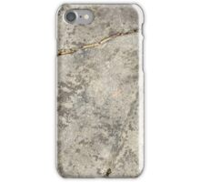 Mossy Stone iPhone Case/Skin