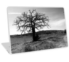 Tilted Tree Laptop Skin