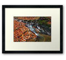 Autumn Brook Framed Print