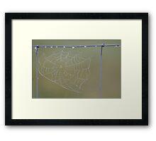 Dewy Web Framed Print