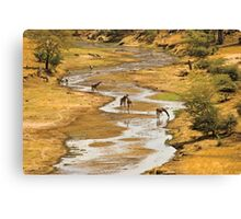 Paradise on earth Canvas Print