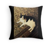 Atticus Fitch  Throw Pillow