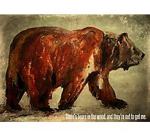 There's Bears In The Wood, And They're Out To Get Me Photographic Print
