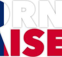 Texas - Born and Raised Sticker