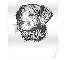 Puppy Pencil Drawing Poster