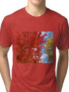 Garnet and Gold Glory - Autumn Sugar Maples Tri-blend T-Shirt