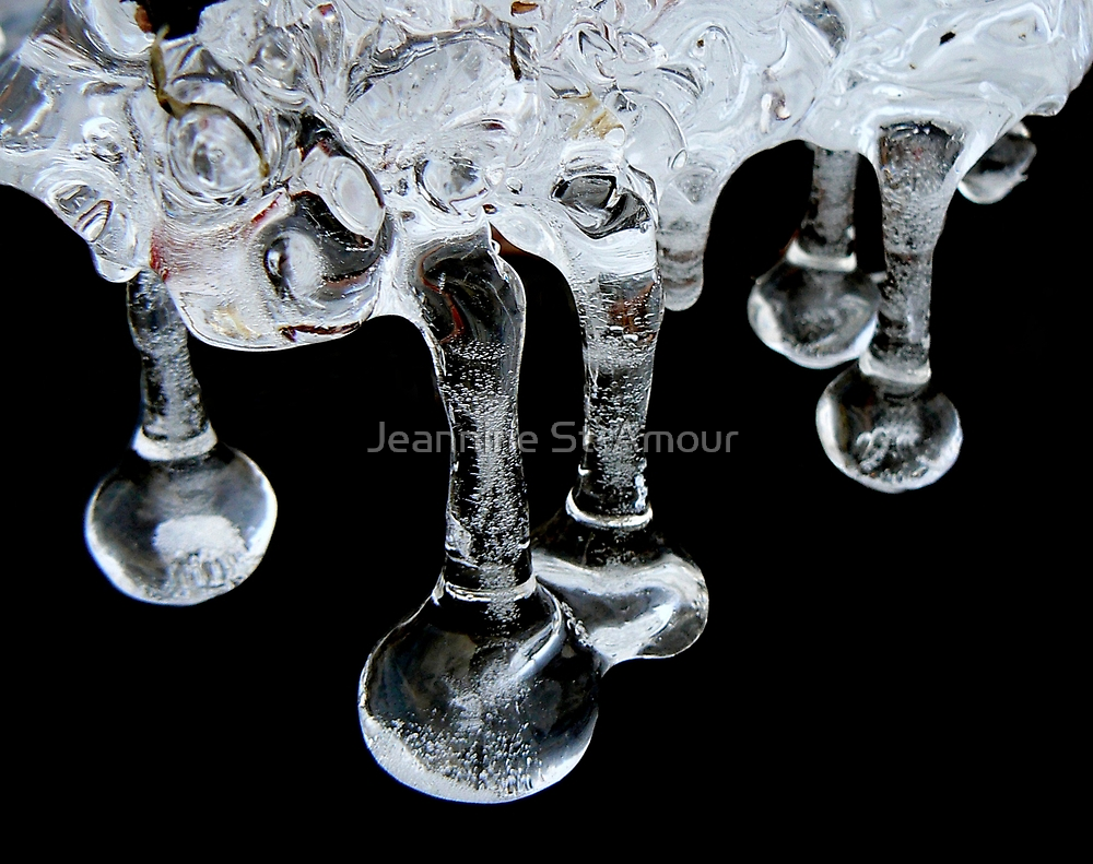 Tear drops by Jeannine St-Amour
