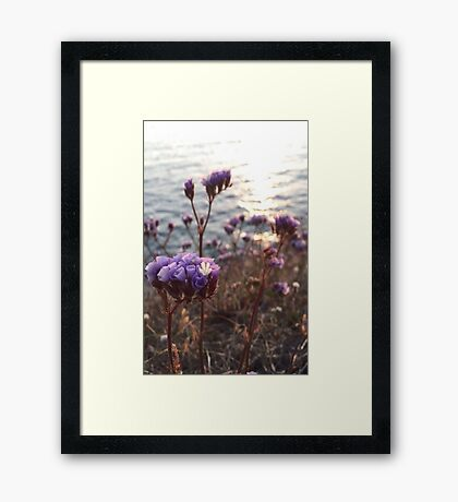 Purple Ocean Flowers Framed Print