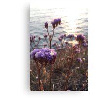 Purple Ocean Flowers Canvas Print