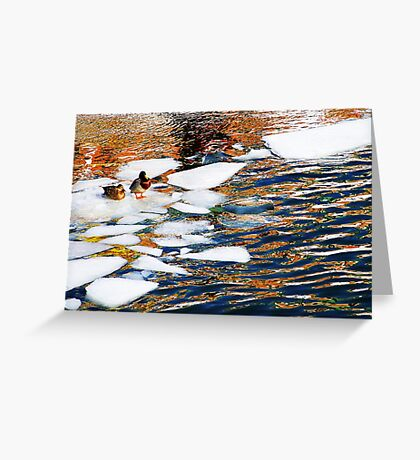 Ice Floes in Sweden, Stockholm Greeting Card