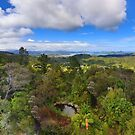 Coromandel, New Zealand, from the Railway by Peter Doré