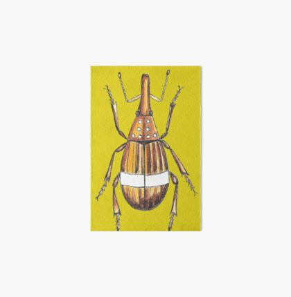 Insect drawing Art Board