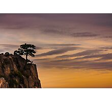Tree on Cliff Photographic Print
