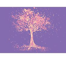 Watercolor of autumn tree Photographic Print