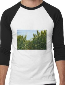 Wheat Field Men's Baseball ¾ T-Shirt