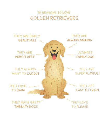10 Reasons to love Golden Retrievers Sticker