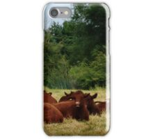 Bovine break iPhone Case/Skin