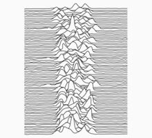 Joy Division : Unknown Pleasures - Black by Joy Division