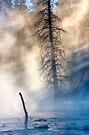 Fountain Paintpots, Yellowstone National Park, USA. by PhotosEcosse