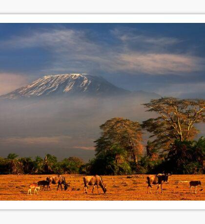 Kilimanjaro in early morning light, Amboseli National Park, Kenya, Africa. Sticker