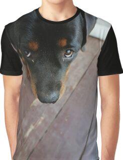Rottweiler  Graphic T-Shirt