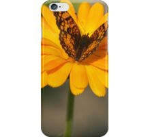 Butterfly on a Pedestal iPhone Case/Skin