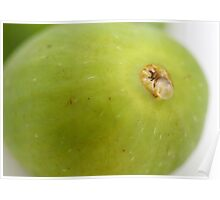 Green Fig Poster